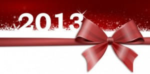 gift bow 2013