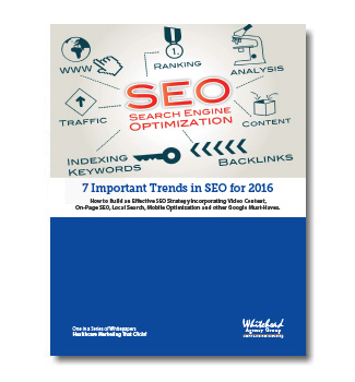 seo trends guide